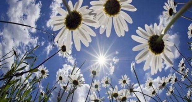 sunce1-e1468826991342
